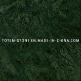 Design Natural Stone Verde Alpi / Green Marble with Low Price