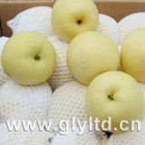 Fresh New Crop Golden Pear
