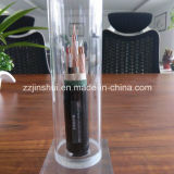 Solid Core or Twisted Tightly Pressed Semi Cylindrical Conductor Armoured Cable XLPE