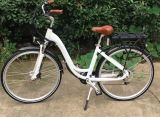 200-250W Motor Electric Bicycle