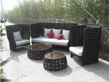 High Back Wicker Sofa Set (WS-06026)