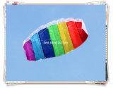 Dual Line Power Sports Kite