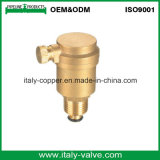 ODM Type Brass Air Vent Valve (IC-3041)