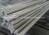 Round Stainless Steel in China
