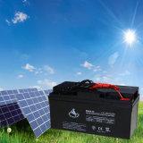 Popular Sealed Maintenance Free 12V 65ah Lead Aicd Solar Battery