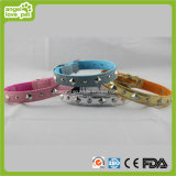 Mandarin Orange Pet Collar Pet Product