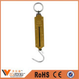 Pull Type Brass Face Spring Hanging Scale Mechanical Weighing Scale