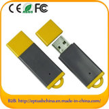 Customized Logo Plastic USB Flash Drive/USB Memory (ET618)