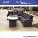 Outdoor Patio Sofa Alum Flat Wicker Table Rattan Sofa Garden Furniture (J400)