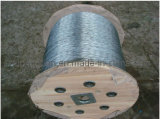 Galvanized Steel Wire Rope Steel Wire