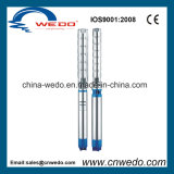 8sp Series Submersible Deep Well Pump for Irrigation