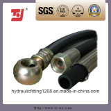 Stainless Steel Flexibal Metal Hose/Pipe Assembly