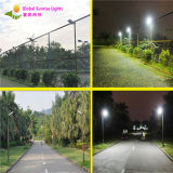 Fashion Style 8W All in One Intelligently Outdoor Solar Garden Lamp