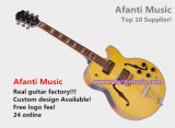 Afanti Hollow Body Jazz Guitar (AJZ-205)