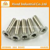 Stainless Steel Torx Csk Head Tamper Proof Security Screw