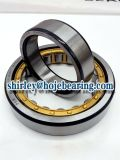 Car Sleeve Cylindrical Roller Bearing Nu1006 Nu206 Nu2206