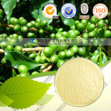 Hight Quality Pure Natural Green Coffee Bean Extract