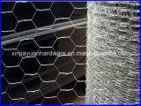 Hexagonal Wire Mesh/Chicken Wire Mesh/Galvanized Hexagonal Wire Netting