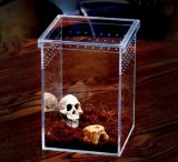 High Transparency Clear Acrylic Reptile Case with Lid
