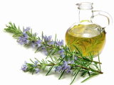 100% Pure & Natural Rosemary Essential Oil Wholesale Price