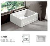 Two- Skirt Built-in Common Acrylic Bathtub (BL-1001)