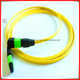 China Products Prices MPO Fiber Optic Patch Cord From Alibaba Premium Market