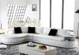 Modern Style Leather Sofa Top Grain Leather Sofa F226
