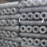 Hexagonal Wire Netting Mesh with Electro Galvanized Wire