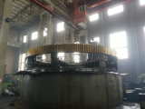 Gear Used for Rotary Kiln and Ball Mill