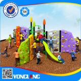 Plastic Outdoor and Indoor Playgorund Climbing for Children