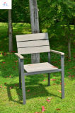 100% Plastic Wood for Outdoor Furniture Park Furniture with Chair