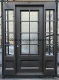 Exterior Wrought Iron Security Door with Sidelight and Window