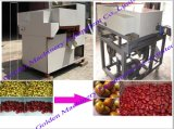 Date Pitting Palm Cherry Jujube Kernel Remove Pitter Machine