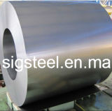 Competitive Price for Galvanized Steel Coil