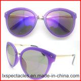 2017 New Fashion PC Design Sun Glasses with Metal Bridge