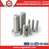 Stainless Steel Bolt / Hex Head Bolt