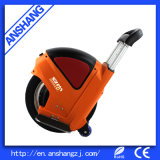 Cheap Self Balancing Electric Unicycle with Bluetooth Music