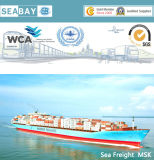 Best Reliable Sea Freight From China to Genova