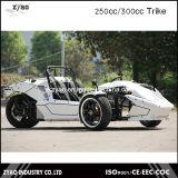 300cc Motor Tricycle 250cc EEC Ztr Trike Quad