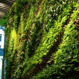 High Quality Artificial Plants and Flowers of Green Wall