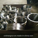 ANSI SS304 Steel Forged Plate Flange Flat Flange for Pipe Fittings