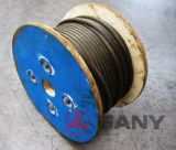 Auxiliary Winch Wire Rope for Sany Truck Crane (QY25)