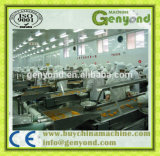 Complete Fruit in Syrup Production Line