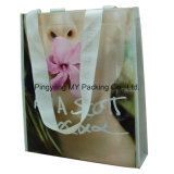 Non Woven Bag of Professional Manufacturer