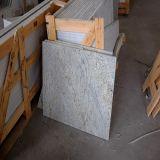 Polished Kashmire White Granite for Kitchen Island