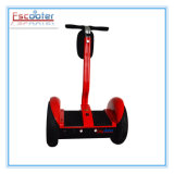 2 Wheel Special Design New Electric Trike Scooter