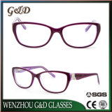 High Quality Latest Acetate Spectacle Optical Frame Eyeglass Eyewear