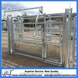 Cattle Crushes Live Stock Handling Equipment