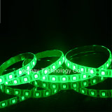 Silicon Glue waterproof IP65 LED Strips with UL