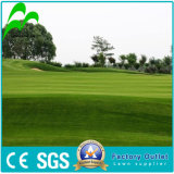 Chinese Suppiler of UV-Resistance Natural Looking Garden Royal Artificial Turf